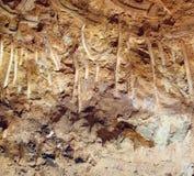Industriell jordgrävskopa Scrape Marks Left på en backe Royaltyfri Bild
