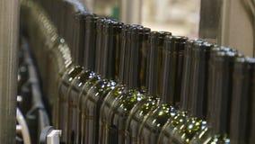 Industriell linje för att buteljera vin stock video