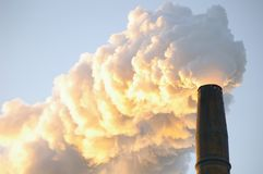 industriell rökbunt