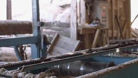 Industriell sah Maschine mit genauem Laser-Zeigerausschnitt-Bauholzklotz stock video