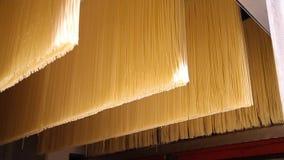 Industriell utrustning för spagettitillverkning stock video