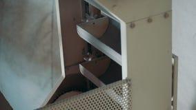 Industriell utrustning på pastafabriken - arbetande transportband arkivfilmer
