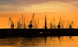 Industriella kranar Royaltyfri Foto