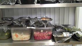 Industrielle Kühlschränke für Lagerung von Salaten und von anderen Nahrungsmitteln stock video