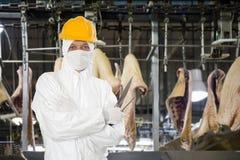 Industrieller Metzger Lizenzfreie Stockfotos