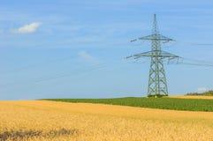 Industrielles Ackerland vor Ernte Lizenzfreie Stockfotos