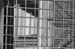 Industrielles Treppenhaus Nahaufnahme Addieren Sie grauen Tönungseffekt Stockfoto
