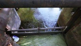 Industriellt avloppsvatten och skum stock video