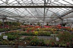 Industriellt växthus Royaltyfria Bilder