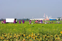 Industry. Workers laboring in a field on a hot summer day is the focus but there is other interesting industry featured in this image Stock Photography