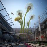Industry growing dandelions Stock Photo