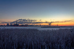 Industry with smoke chimneys and nature reed landscape in sunrise Royalty Free Stock Image