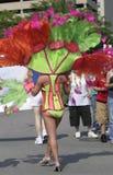 Όμορφο ζωηρόχρωμο κοστούμι της παρέλασης υπερηφάνειας Indy Στοκ εικόνα με δικαίωμα ελεύθερης χρήσης
