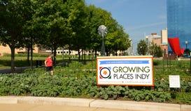 Indy för växande ställen stads- lantgård, i stadens centrum Indianapolis royaltyfria bilder