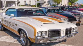 Indy 500 pace cars --  Royalty Free Stock Photos