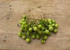 Indycza jagoda lub groch oberżyna obraz royalty free