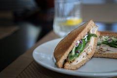 Indycza kanapka w brown chlebie Zdjęcie Royalty Free