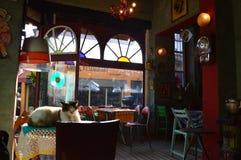 Indyczy Istanbuł, Styczeń - 8, 2018: Wygodna kawiarnia w rocznika stylu fotografia royalty free