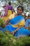 indyjski żeński sprzedawca Obraz Royalty Free