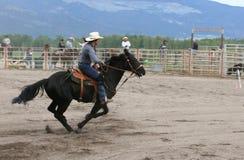 indyjski bogaty rodeo Zdjęcie Stock