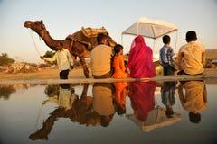 indyjski życie Fotografia Royalty Free