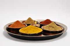 indyjskie pikantność Zdjęcia Stock