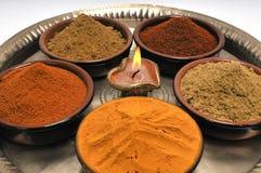 indyjskie pikantność Obraz Stock