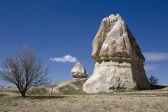 indyk cappadocia obraz royalty free