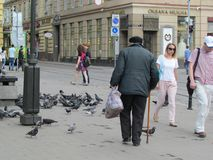 Inequality old man and pigeons stock image