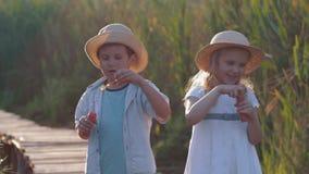 Infância feliz, menino bonito da criança e bolhas do sopro da menina na natureza na luz ensolarada video estoque