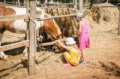Infância na exploração agrícola Foto de Stock Royalty Free