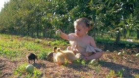 A infância rural, criança feliz é jogada com notícia falsa pequena no jardim durante a colheita no outono filme
