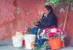 Infödd infödd dam med blommaaffär, i Mexico, Amerika royaltyfri bild