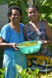 Infödd Fijianmoder och dotter arkivfoton