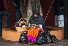 Infödd infödd gammal dam i färgrik klänning med handgjord affär, i Mexico, Amerika fotografering för bildbyråer