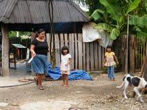 Infödd havrekoloni som har inverkan av armod på fattiga neighbourhoods i Belize orsaka kocken för jordbruks- utveckling arkivfoto
