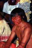 Infödd indier av Brasilien arkivfoto