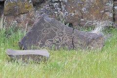 Infödd indisk mytisk djurPetroglyph royaltyfri bild