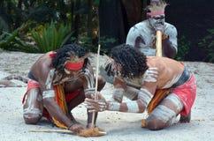 Infödd kulturshow i Queensland Australien royaltyfri fotografi