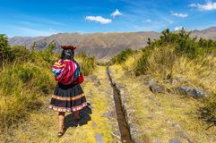 Infödd Quechua flicka, sakral dal, Peru arkivfoton