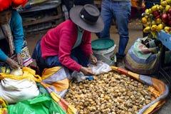 Infödd resande kvinna som sitter på jordningen och säljer aguaymantofrukt royaltyfria foton