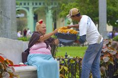 Infött folk i Havana Cuba, som är karibisk Arkivfoto