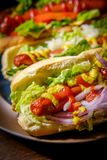 Infall grillade Hotdogs Arkivbilder