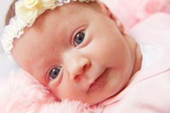 Infant. Closeup portrait of infant baby girl Royalty Free Stock Images