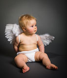Infant baby with angel wings Royalty Free Stock Photography