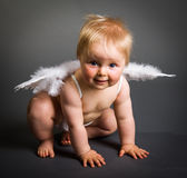 Infant baby with angel wings Royalty Free Stock Images