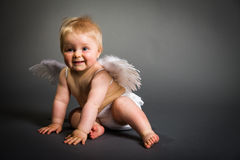 Infant baby with angel wings Royalty Free Stock Photo