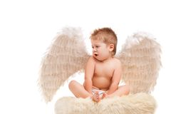 Infant baby with angel wings Stock Photos