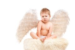 Infant baby with angel wings Royalty Free Stock Image