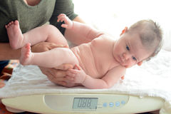 Infant baby been examined on the balance. Three months old infant baby been examined on the balance. Concept photo of child, infant, newborn , baby, development Stock Photos